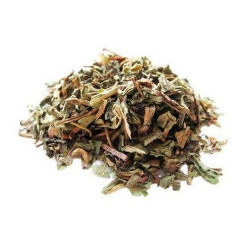 Dente de Leão Folhas (Chá) - Rei das Castanhas