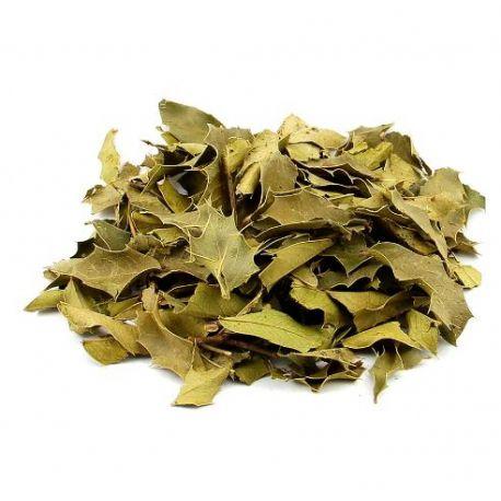 Espinheira Santa Folhas (Chá) - Rei das Castanhas