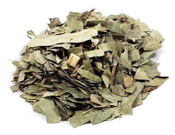 Eucalipto em Folhas (Chá) - Rei das Castanhas