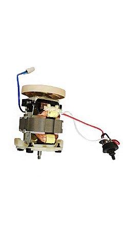 Motor 220v - 2061501888700