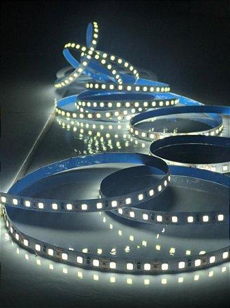 FITA LED 2835 12V 5M 24W 120LED/MTO 600 LED LP20 BF 6500K