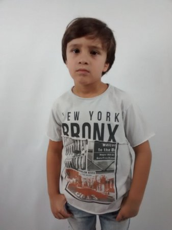 Camiseta Infantil Importada Zara Boys New York Bronx