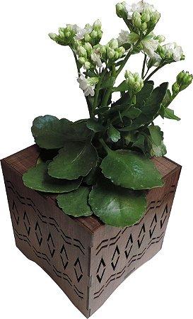 Vaso Cachepot de Madeira Afro 15x15x15cm