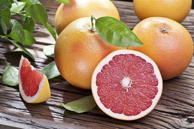 Toranja/grapefruit - 1 Muda