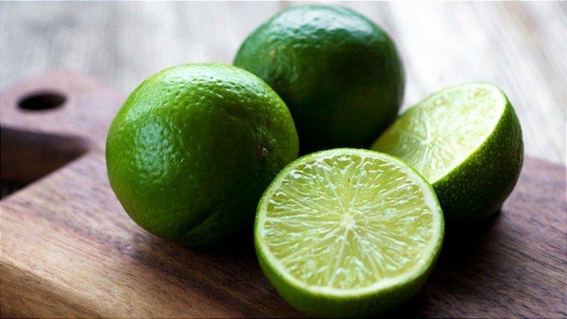 Limão Taiti (Enxertado) - 1 Muda Média - Próximo de Produzir!
