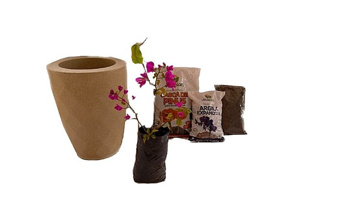 Kit Mãos na terra -  Vaso Safira + Muda de Bouganville - Pronto para plantar