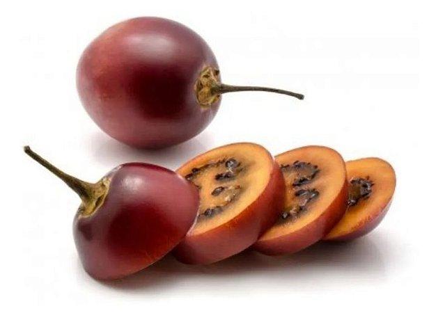 Tamarilho Roxo (tomate De Árvore) - 1 Muda