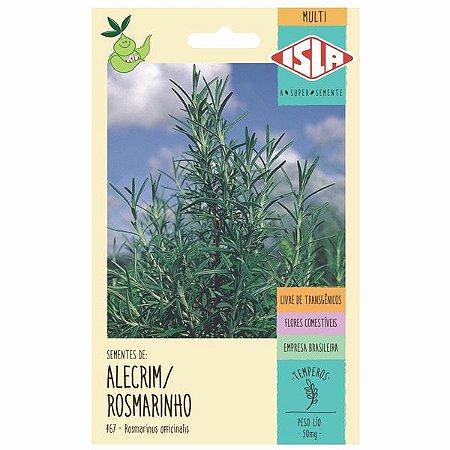 Alecrim / Rosmarino - 35 sementes - Isla