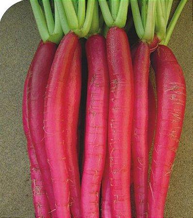 Rabanete Vermelho Comprido - 1200 Sementes - Isla