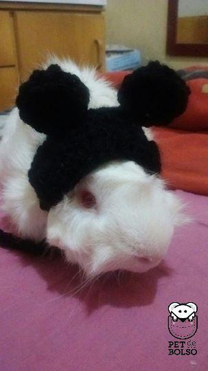 Touca em Crochet para PDI