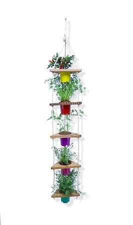 Horta Suspensa Vertical Madeira Reflorestada Vasos Coloridos de Plástico Reciclado