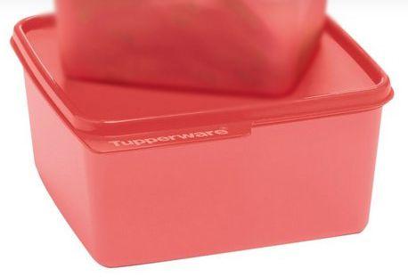 Basic Line Watermelon 2,5  Litro - Tupperware
