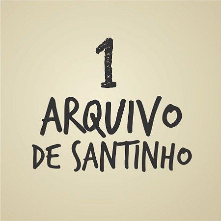 1 ARQUIVO AVULSO DE SANTINHO