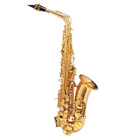 Sax Alto Michael Dual Gold WASM 48 Eb