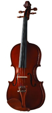 Violino Michael VNM36 3/4 Maple Flame com Estojo