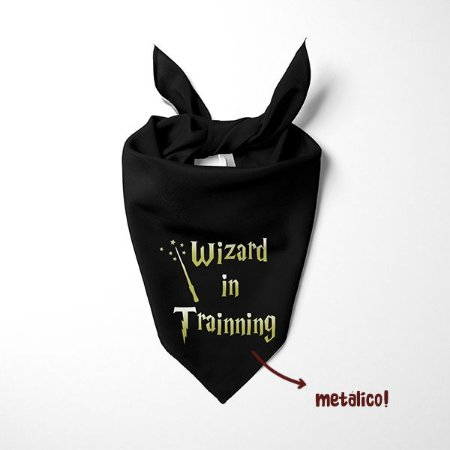 Bandana Wizard in Trainning