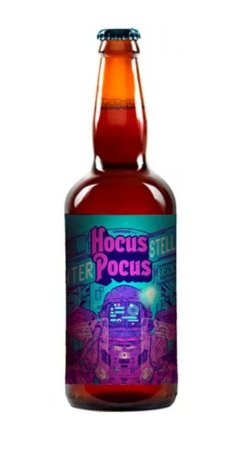 Cerveja Hocus Pocus Interestellar 500ml