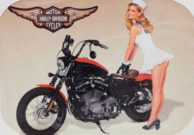 Placa Decorativa Retrô - Harley Davidson Pin-up
