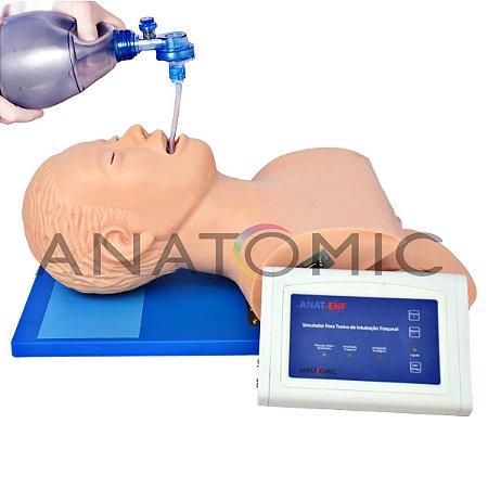 Simulador para Treino de Intubação Traqueal, com Dispositivo de Controle - TGD-4007