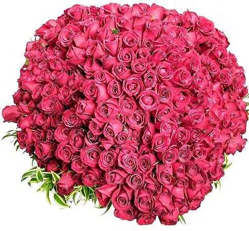 Buquê com 400 rosas vermelhas
