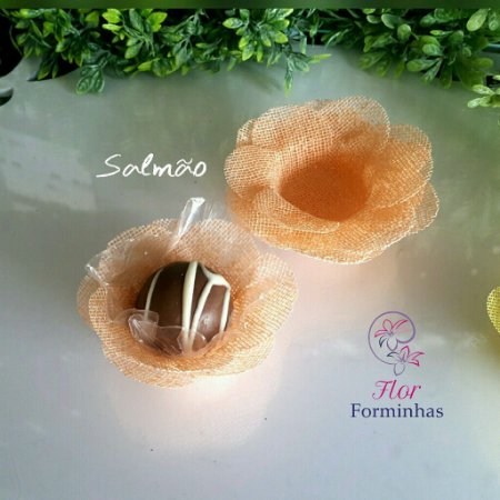 50 Formas para doces Camelia Salmao- F011