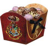 Cachepot Harry Potter com 08 unidades