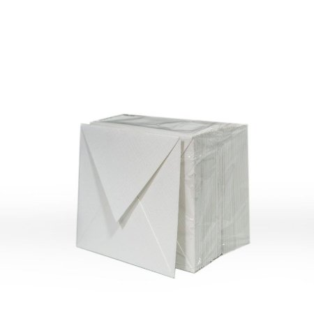 Lote 48 - Envelope Aba Bico 8,0x8,0 - 50 unid.
