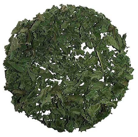 Chá Hortelã
