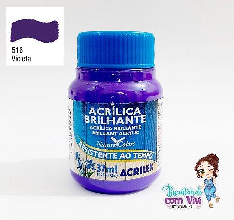 Tinta Acrílica Brilhante Acrilex - Violeta