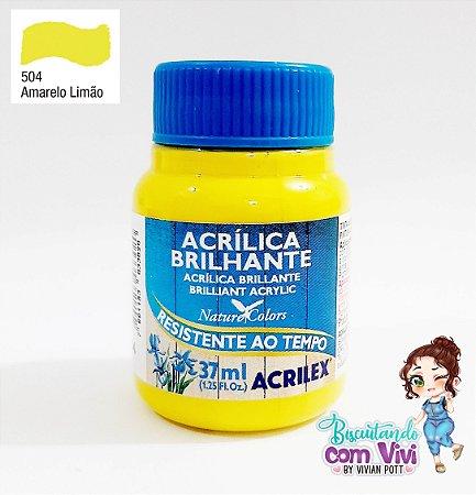 Tinta Acrílica Brilhante Acrilex - Amarelo Limão