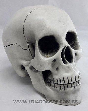 Crânio - Branco - 18cm