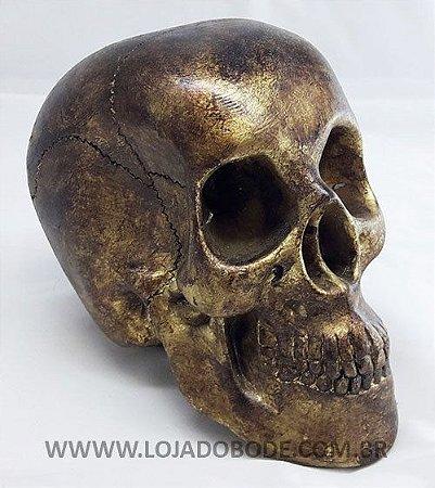 Crânio - Pintura imitação Ouro Velho - 18cm