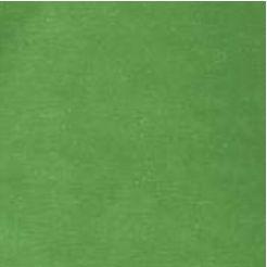 Papel para Scrapbook Escovado 30,5x30,5 Art0094 Verde Folhado