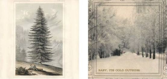 Papel para Scrapbook Desenhos 30,5x30,5 Art0168 Winter Botany
