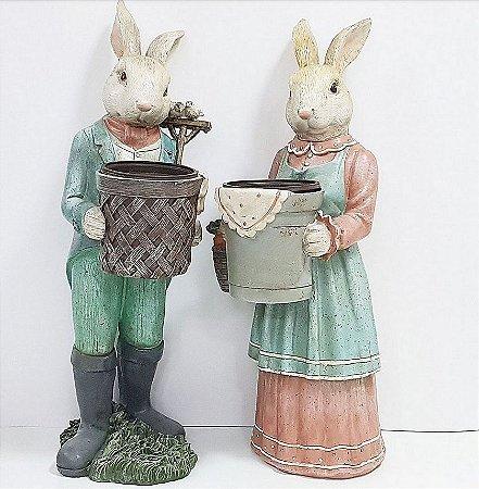 Sr. e Sra. Rabbit ilustritto