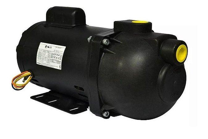 Bomba De Água Autoaspirante 2cv Dancor Ap-3c 127/220v Bivolt
