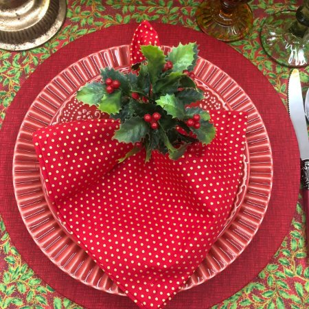 Porta Guardanapo Fruta Natal