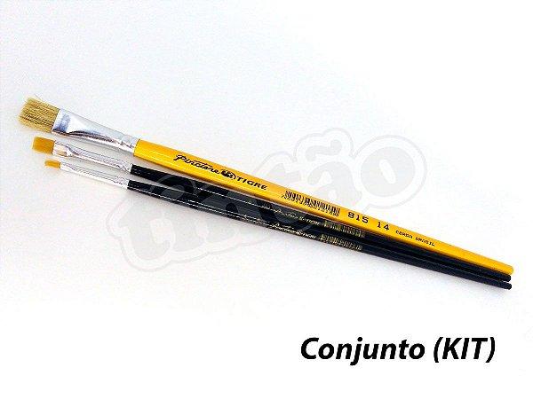 Kit para Pintura em Tecido e Artesanato 6216 - 3 pincéis (Pinctore/TIGRE)