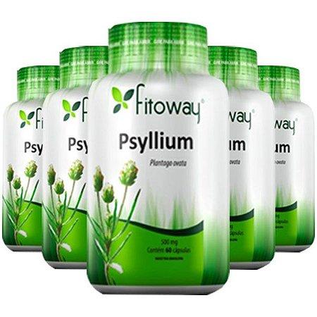 Psyllium 500mg - 5 unidades de 60 cápsulas - Fitoway