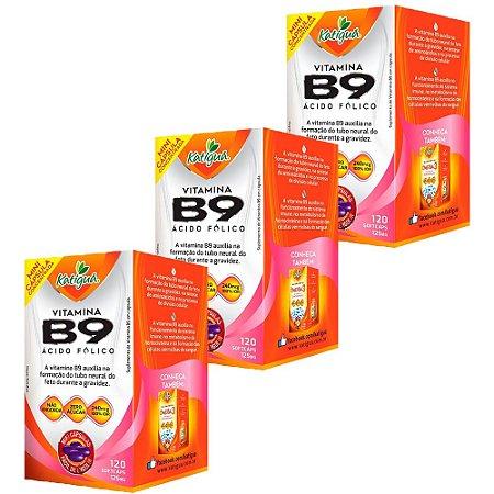 Vitamina B9 Ácido Fólico - 3 unidades de 120 Cápsulas - Katigua