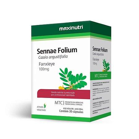 Sene (Cassia angustifolia) - 30 Cápsulas - Maxinutri