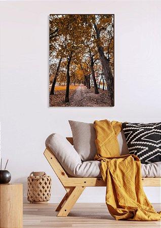 Quadro decorativo Caminho de árvores com folhas amarelas [BoxMadeira]