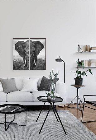 Dupla de quadros Elefante [Box de Madeira]