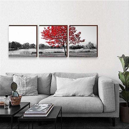 Trio de Quadros Árvore Vermelha [BOX DE MADEIRA]
