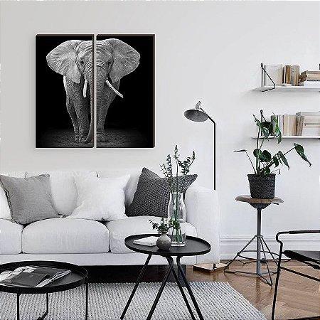Dupla de quadros Elefante fundo preto [boxdemadeira]