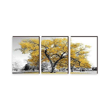 Trio de Quadros decorativo Árvore Amarela [BoxMadeira]