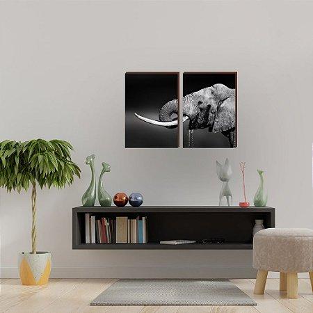 Dupla de quadros Elefante Mod.02  fundo preto [boxdemadeira]