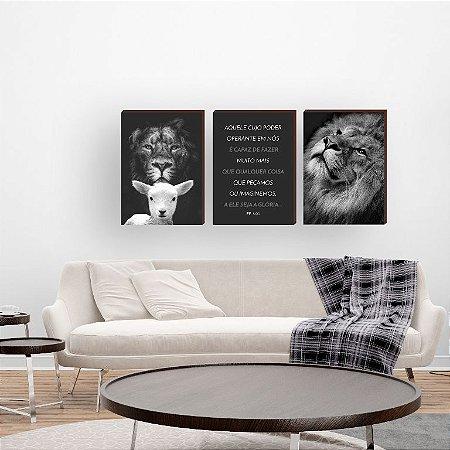 Trio de quadros Leão + Aquele cujo poder [BoxMadeira]