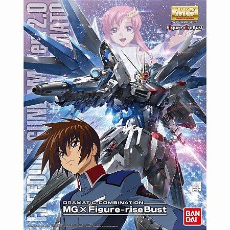 Bandai MG Gundam Freedom 2.0 Dramatic Combination MG 1/100 Model Kit