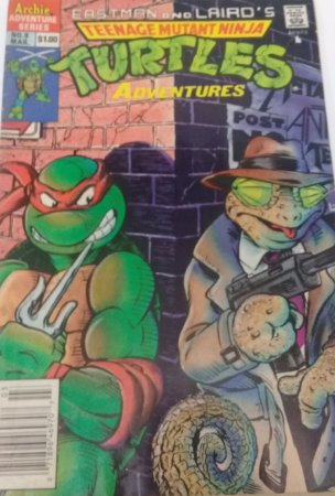 Teenage Mutant Ninja Turtles Adventures #9 importada